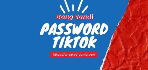 Cara mengatasi lupa password tiktok